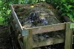 CompostingFood