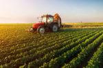 Bioregionalism and Agriculture