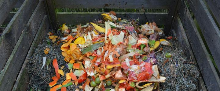 CompostingFood2