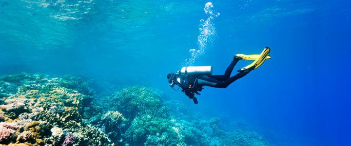 diver_reefs
