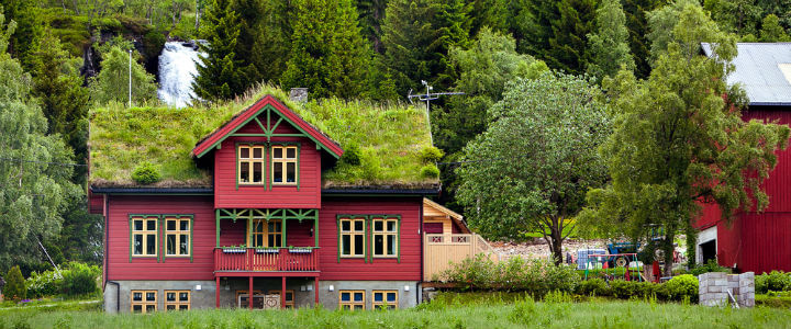 gree_roof_countryside (1)