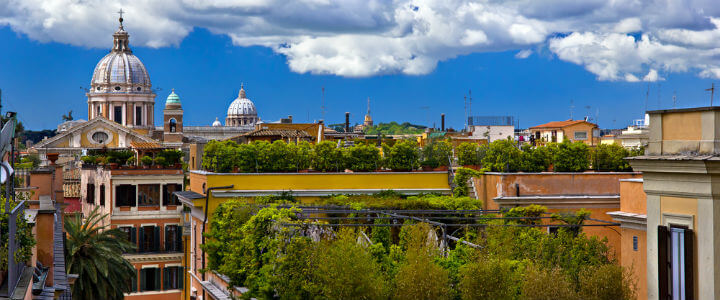 green_roof_city