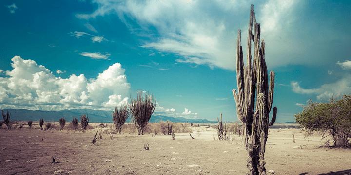 desert720x360
