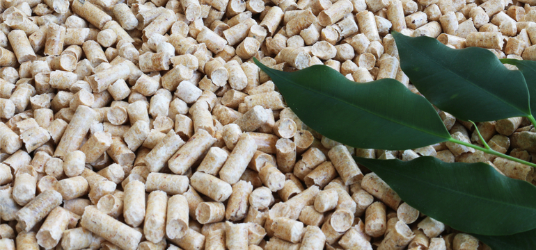 Biomass-720x360