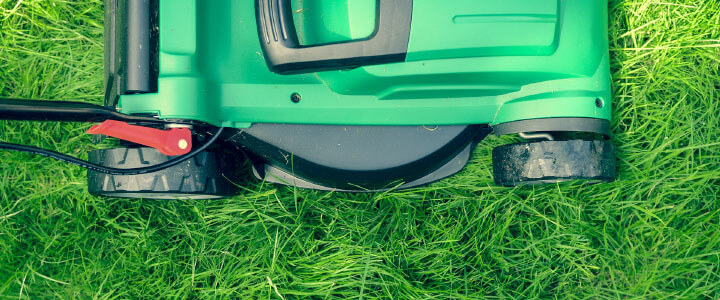 Eco-Friendly Lawn Mowing