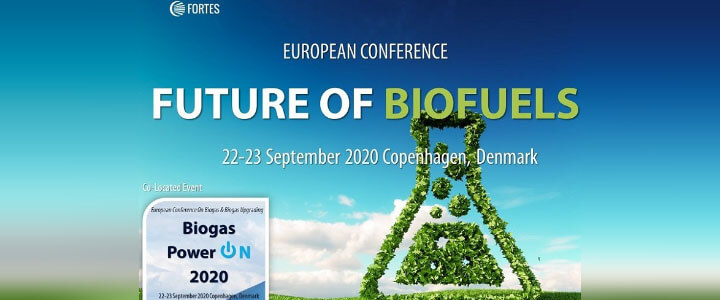 Future of Biofuels 2020