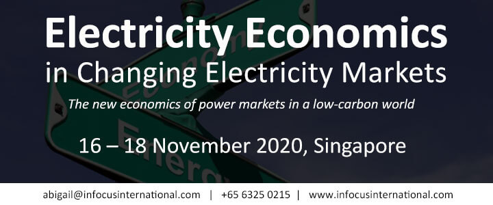 Electricity Economics in Changing Electricity Markets