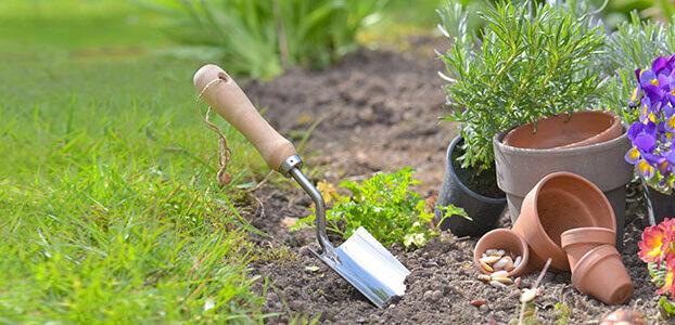 Environmentally-Conscious Gardening