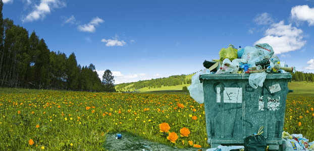 Waste Pollution